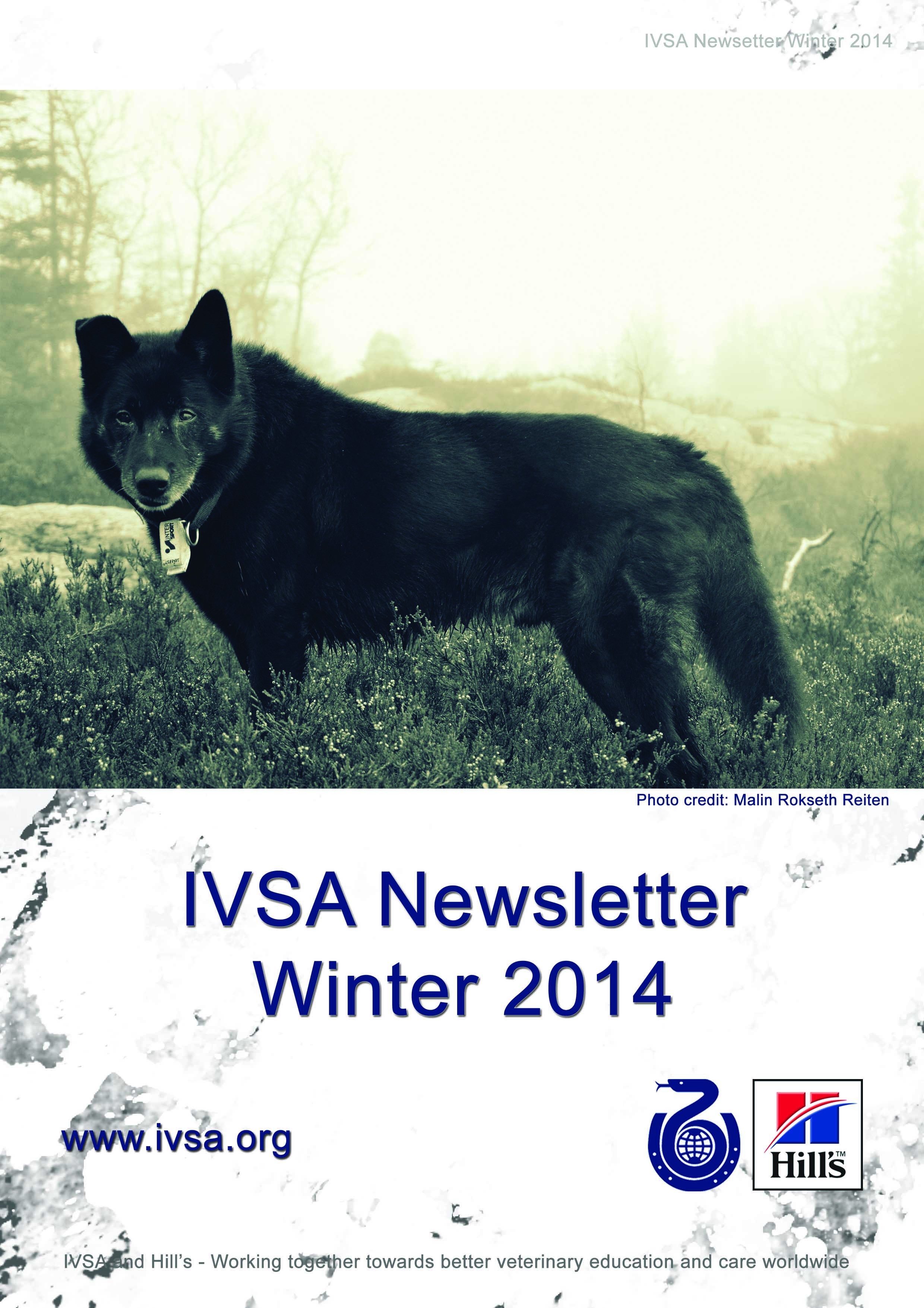 IVSA Newsletter Autumn 2013